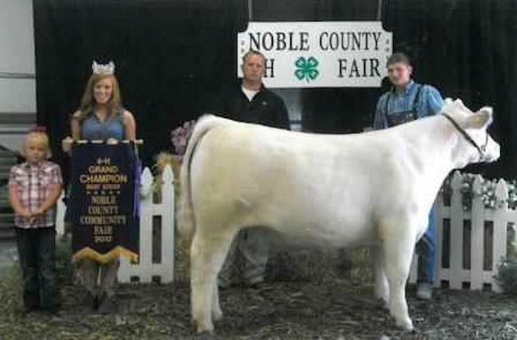 Son, that is one fine prize steer: 4-H stand at Noble County Fair, Ohio