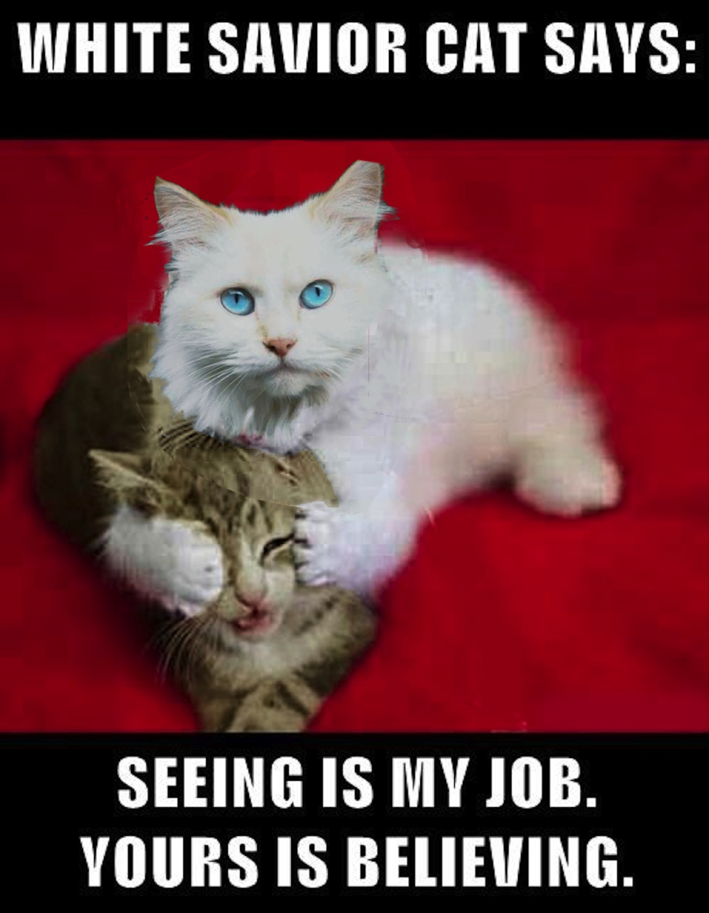 White Savior Cat on the Enligh...