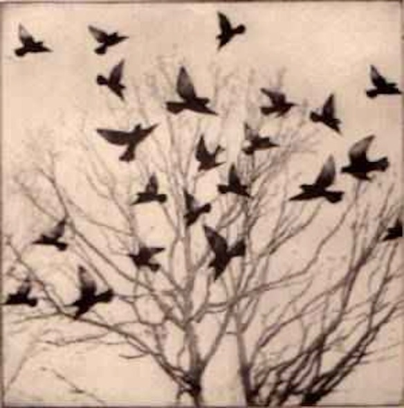 """Blackbirds flying,"" by Kathleen Westkaemper"