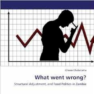 The key question in Zambia: Cover of a study by  Chewe Chabatama