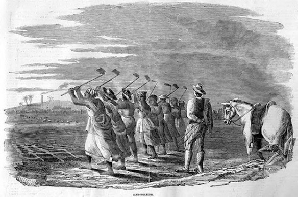 Slaves working in the field in Jamaica: Early 19th-century print